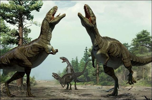 Quel était le plus grand carcharodontosauridé ?