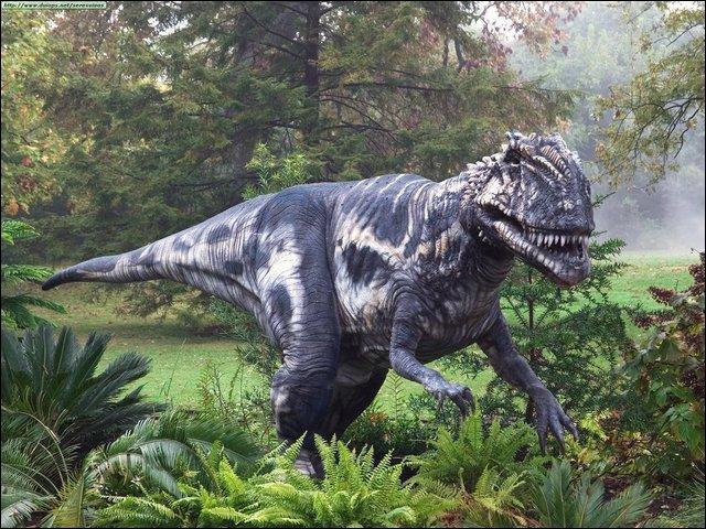 Quel était le plus grand abelisauridé ?