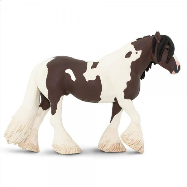 Quelle est la marque de ce cheval ?