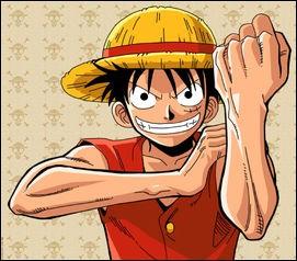 Quel est le nom du fruit du démon que mange Luffy ?