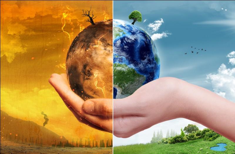 Selon toi, quelles conséquences pourraient découler de la disparition de nombreuses espèces animales et végétales (= ce qu'on appelle la « perte de labiodiversité ») ? (plusieurs réponses possibles)