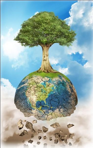 Quelles sont certaines des conséquences probables du réchauffement climatique ?(plusieurs réponses possibles) :