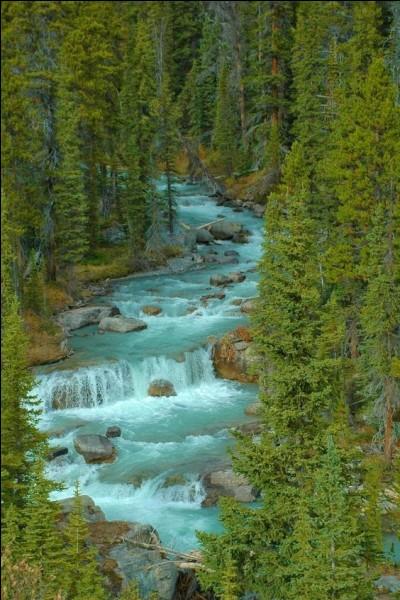Pour lui, elle chante, la rivière insolente :