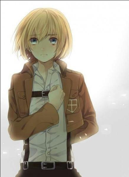 L'âge d'Armin dans l'anime est :