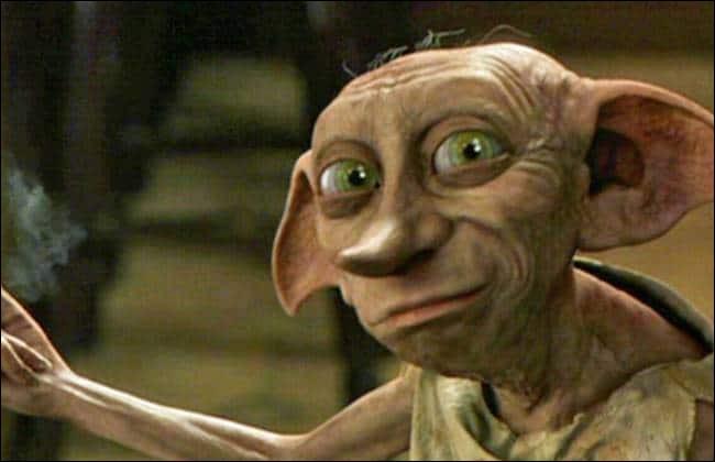 De quelle race est Dobby ?