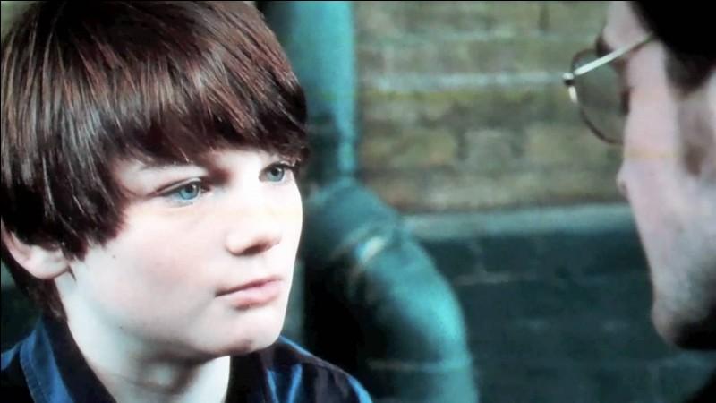 Quel est le nom complet du dernier fils de Harry Potter ?