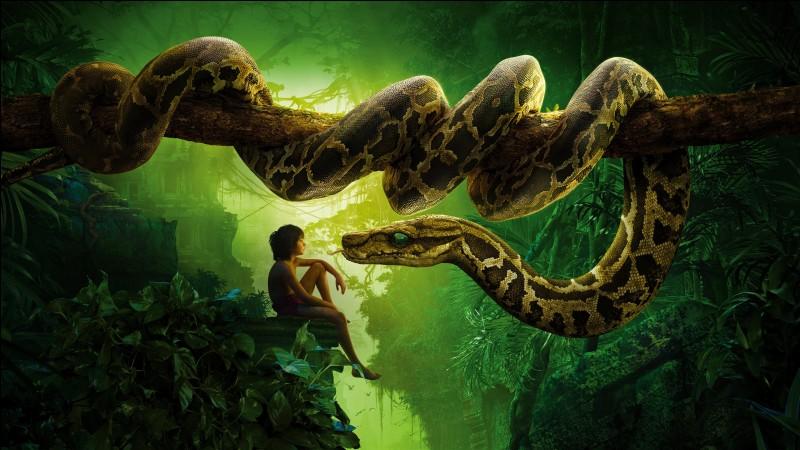 De quelle espèce est le serpent Kaa du Livre de la Jungle ?