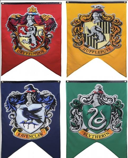 Dans quelle autre salle commune que celle de Gryffondor Harry Potter a-t-il été invité ?