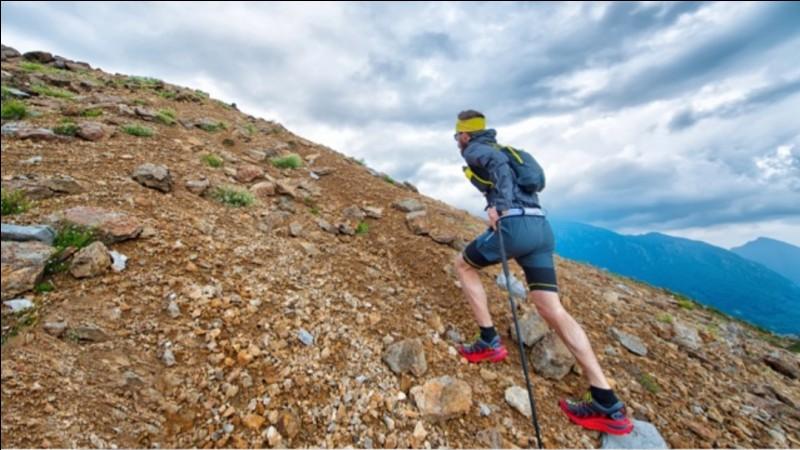 Combien de km fait la course à pied la plus dure du monde ?