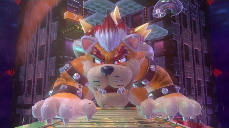 Dans quel jeu, Meowser (Bowser chat) apparaît-il pour la première fois ?