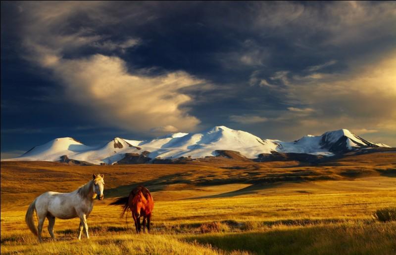 Oulan-Bator est la capitale de la Mongolie.