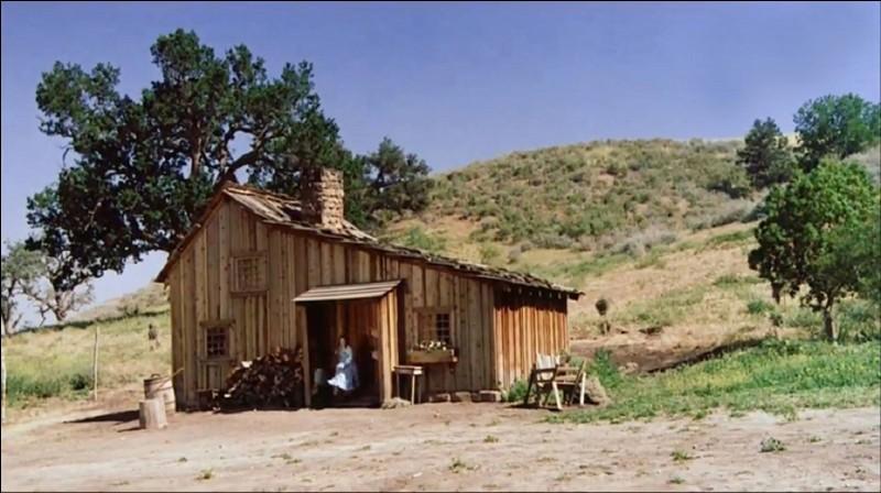 """Quelle famille NE fait PAS partie de la série américaine """"La Petite Maison dans la prairie"""" ?"""