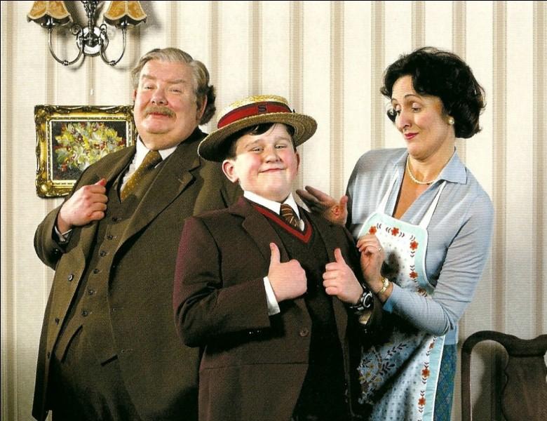 Harry Potter a grandi chez son oncle et sa tante après la mort de ses parents. Mais comment s'appellent-ils ?