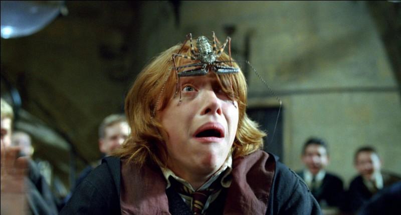 Au début de leur scolarité, les apprentis sorciers choisissent un animal de compagnie. Quel est celui de Ron Weasley?