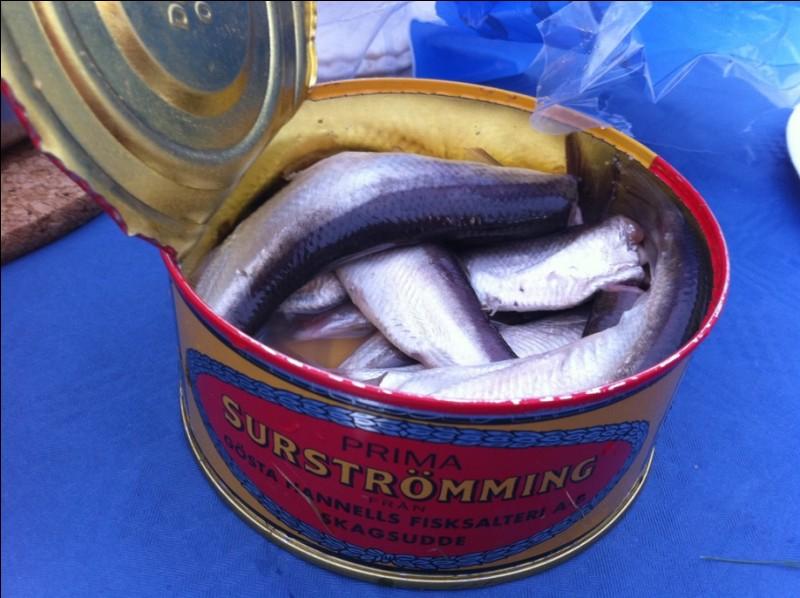 Quel est le pays d'origine du surströmming (hareng fermenté) ?