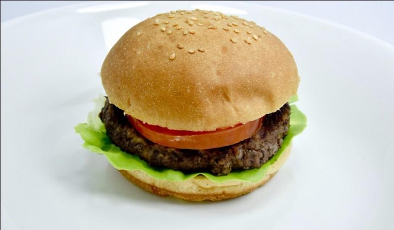 Quel est le pays d'origine du hamburger ?