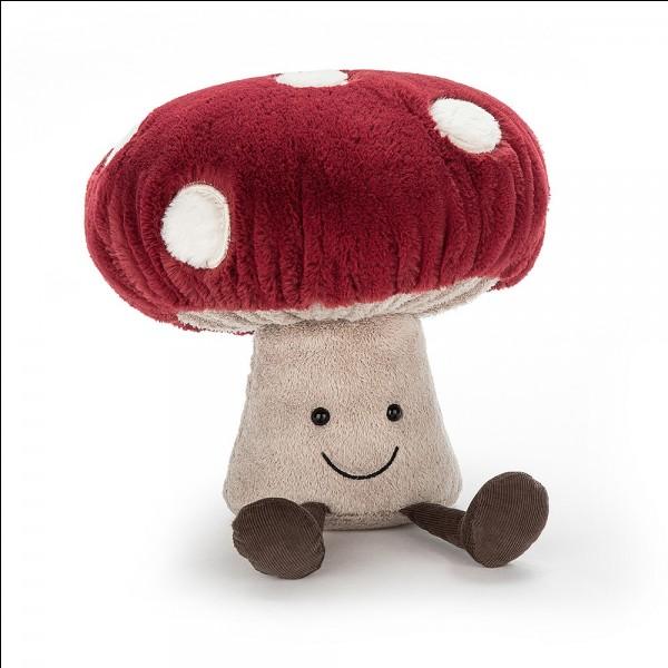 Les champignons peuvent être...
