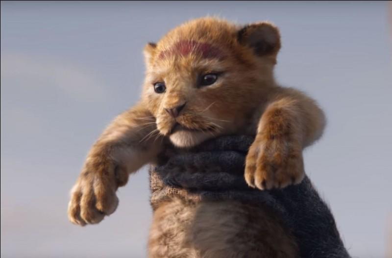 """Cinéma - Qui fera la voix française de Simba dans le """"Roi lion"""" ?"""