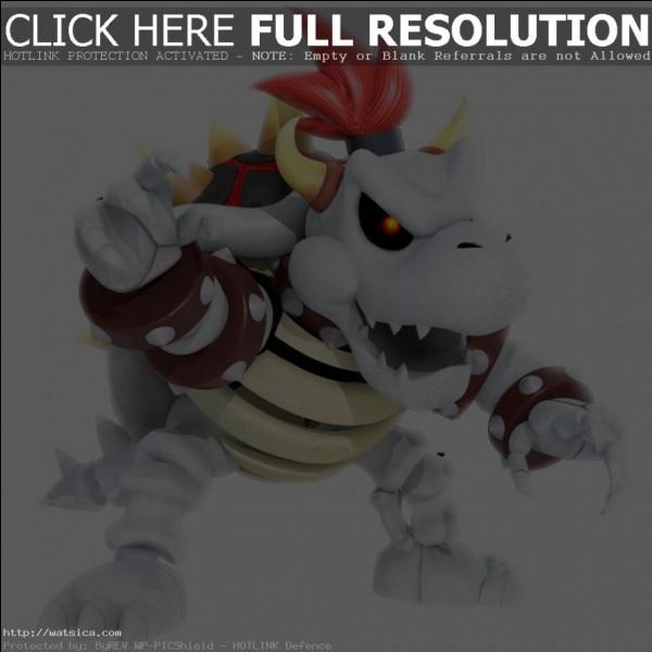 Dans quel jeu Bowser Skelet est-il apparu pour la première fois ?