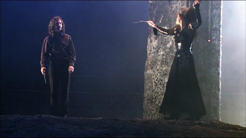 Quel est le lien de parenté entre Sirius Black et Bellatrix Lestrange ?