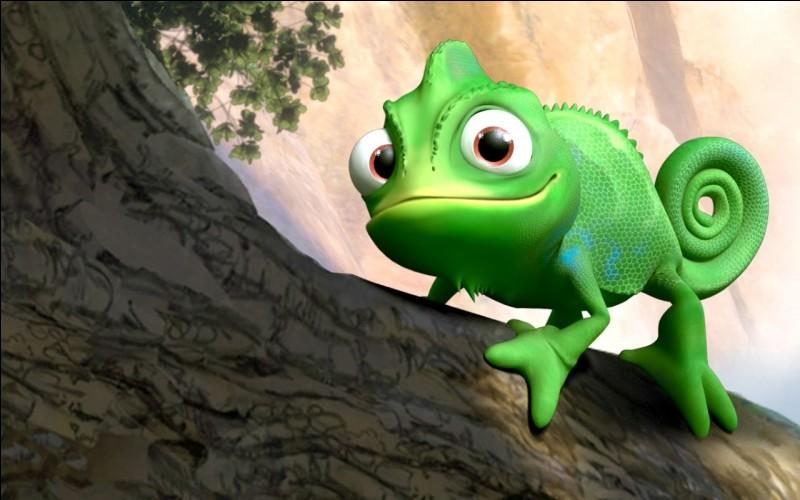 """Dans """"Raiponce"""" qui est Pascal ?"""