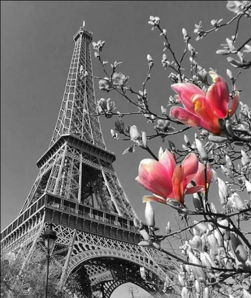 Combien la tour Eiffel a-t-elle de marches ?
