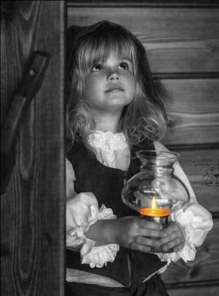 """Dans le livre """"Les Malheurs de Sophie"""", quel était le prénom de son cousin ?"""