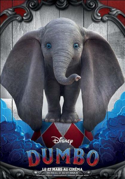 À quoi servent les grandes oreilles ce Dumbo ?