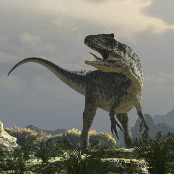 Si tu étais un dinosaure, quel serait ton poids ?