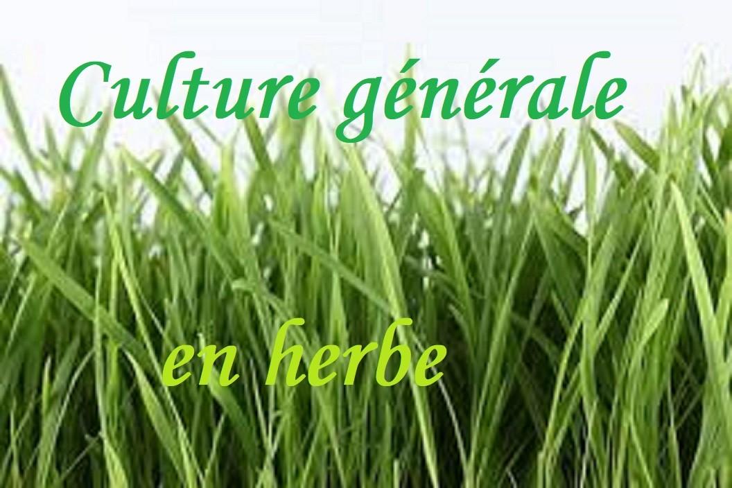 Le mot 'herbe' en culture générale