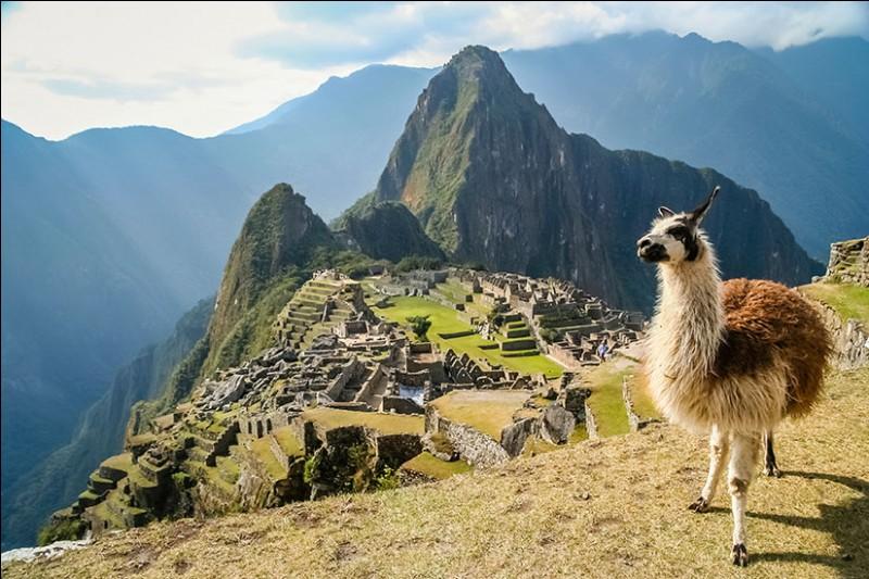 Le Machu Picchu :