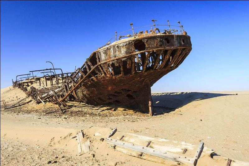 Ce cargo, construit en 1891 à Hambourg, était d'une jauge brute de 2 272 tonnes et d'une longueur de 94 m. Il s'est échoué en 1909 et son épave gît dans le sable à une distance de plus de 400 m du rivage, ce qui atteste de la progression du désert dans l'océan.À quel bateau appartient ce squelette et où le trouve-t-on ?