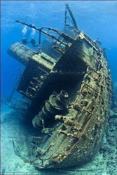 Impressionnant navire de 100 m. jaugeant 2932 t. En 1983, chargé d'une cargaison de bois résineux dans le port croate de Rijeka, sa proue est littéralement montée sur le récif du golfe de Suez. Il est resté planté pour finalement se casser en 2 et glisser au pied du récif.Nommez ce navire qui représente aujourd'hui une belle plongée et déterminez les eaux où il repose :
