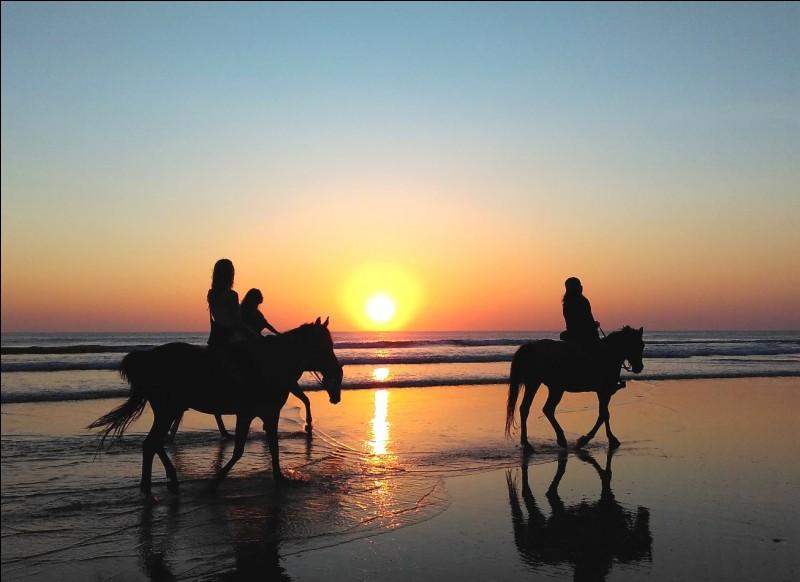 À cheval je monte toujours :