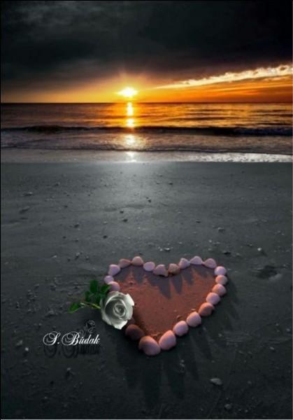 """Qui chantait """"L'Amour à la plage"""" ?"""