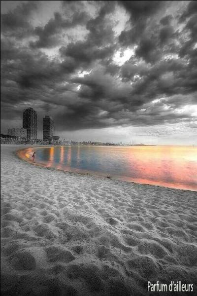 Il avait dessiné son doux visage, puis il a plu sur cette plage, dans cet orage, elle a disparu. Qui était-elle ?