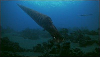 Quel le plus gros prédateur de l'Ordovicien ?