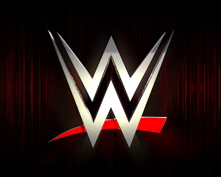 Quel est le nouveau concurrent de la WWE ?