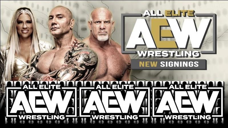 Que veut dire AEW ?