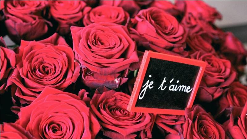 Pour la Saint-Valentin, il t'offre quoi le mec de tes rêves ?