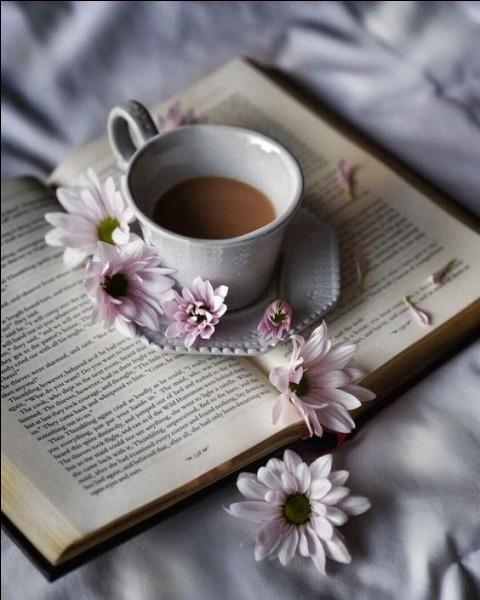 """À qui Pierre de Ronsard dédiait-il les vers """"Et rose, elle a vécu, ce que vivent les roses, l'espace d'un matin"""" ?"""