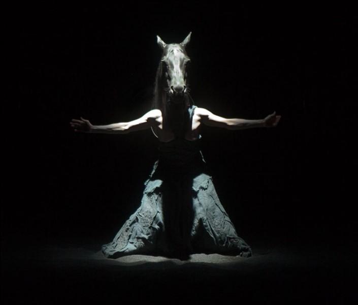 Quel Dieu se métamorphosa en cheval pour s'unir avec la déesse Déméter ?