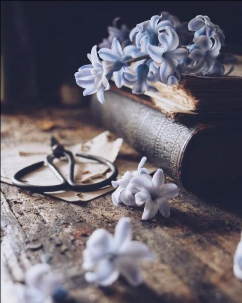 """Quel poète est l'auteur de ces vers : """"L'aube est moins claire, l'air moins chaud, le ciel moins pur, le soir brumeux ternit les astres de l'azur"""" ?"""