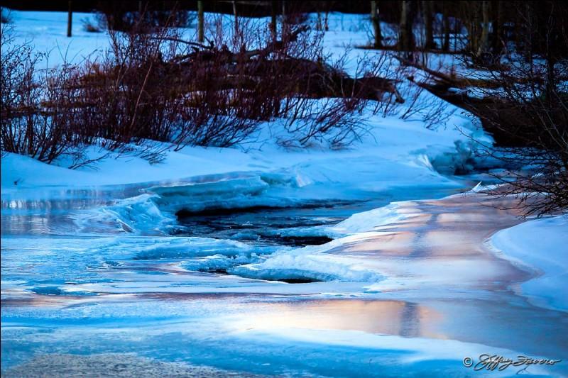Qui informe Étoile Bleue que la rivière est gelée ?