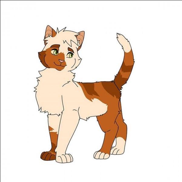 Comment se nomme le chaton de Belle-de-Jour ?