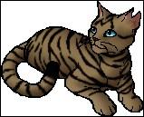 Quel chat devient le premier apprenti de Longue Plume ?