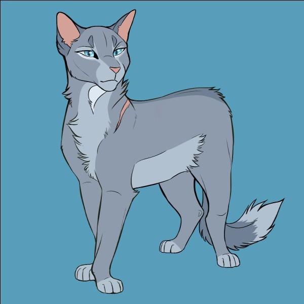 Avec quel chat s'était-elle liée d'amitié quand ils étaient apprentis ?