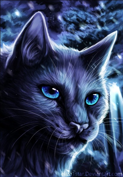 Je suis une chatte gris-bleu et je deviendrai chef de clan, comme ma mère avant moi.Je suis...