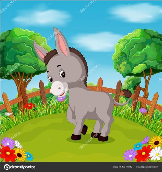 """Quel est ce mets appelé, en Mathésyne et dans le Champsaur, """"les oreilles d'âne"""" ?"""