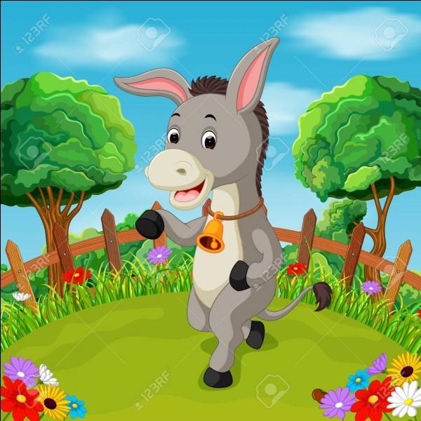 Et si vous avez été nul pour répondre à ce quiz, quel vêtement de l'âne méritez-vous ?